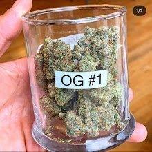 Dog Walker OG Cannabis Strain